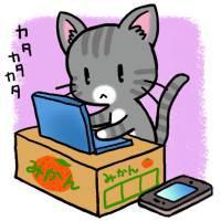 cat-writer1